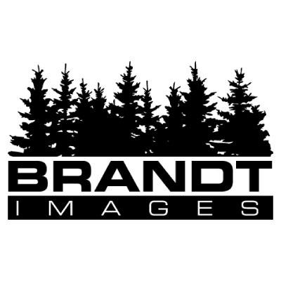 BrandtImages